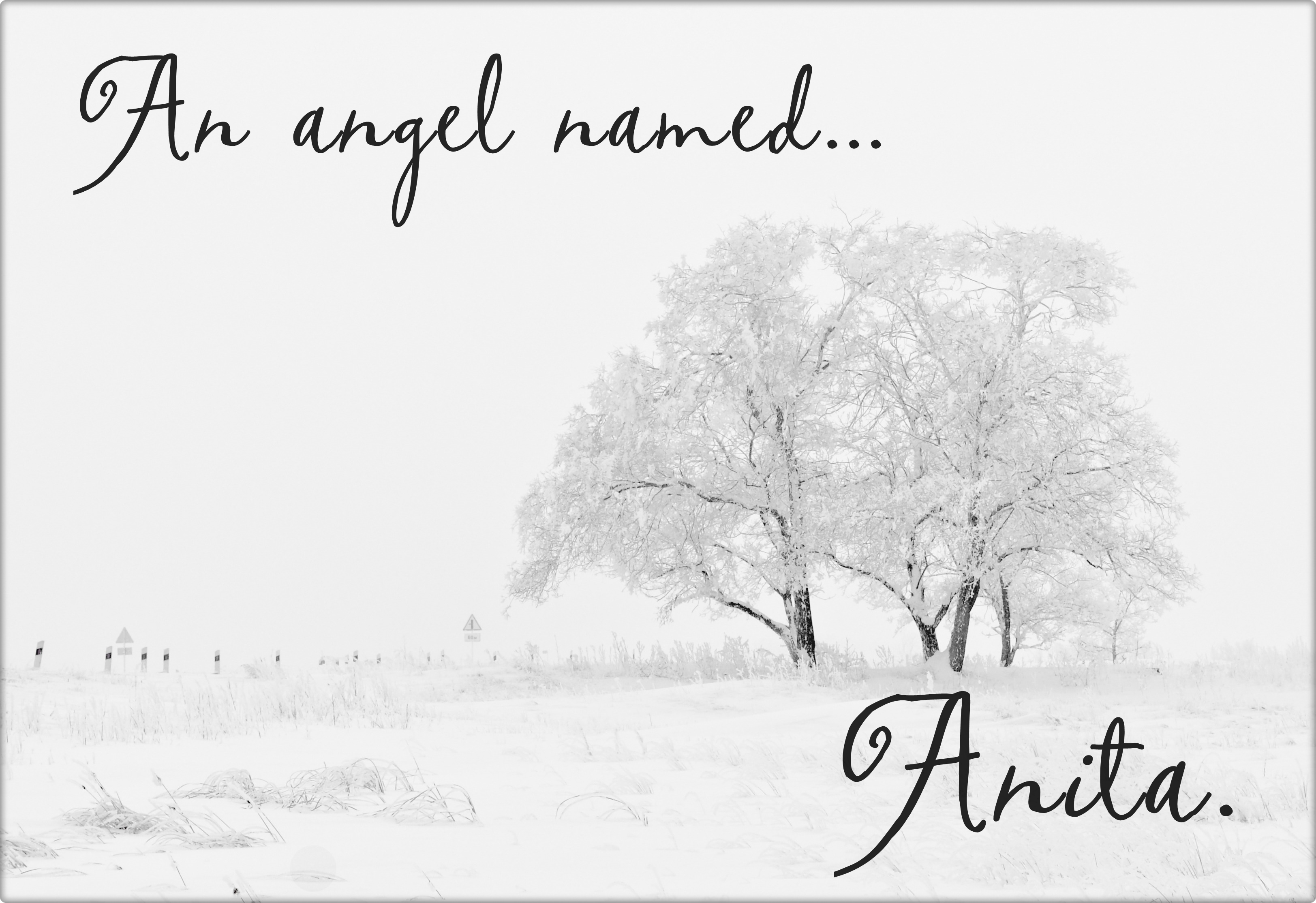 An angel named Anita - main - readingruffolos