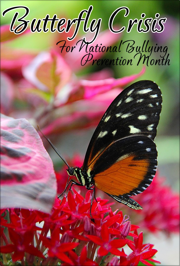 Butterfly Crisis - from pixabay - raves and rants - national bullying month - readingruffolos - main photo